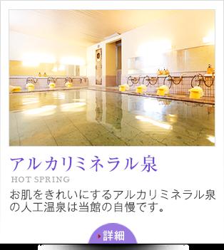 アルカリミネラル泉 HOT SPRING お肌をきれいにするアルカリミネラル泉の人工温泉は当館の自慢です。