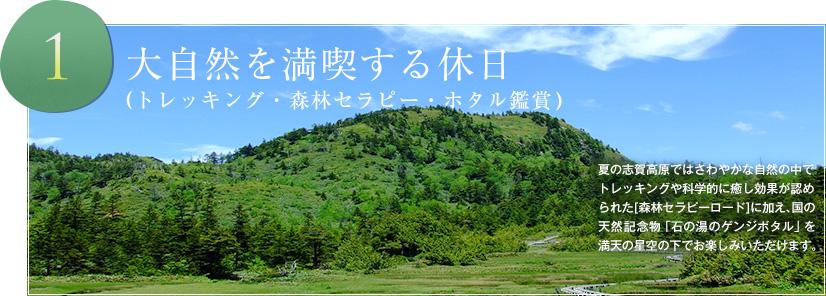 大自然を満喫する休日 (トレッキング・森林セラピー・ホタル鑑賞)