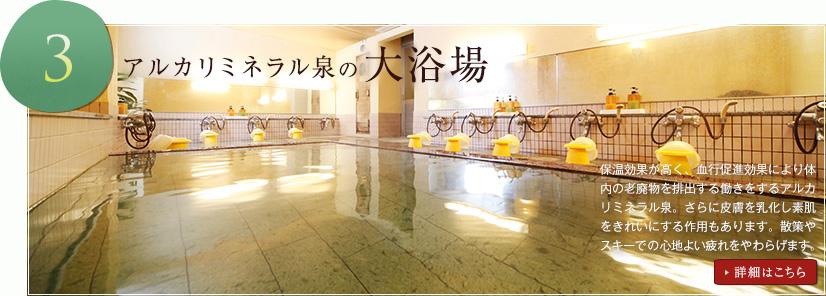 アルカリミネラル泉の大浴場